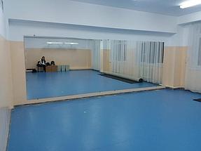 Зеркала в хореографический зал 5