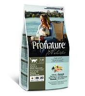 Pronature Holistic Adult Indoor - для кожи и шерсти взрослых кошек, лосось с рисом 340 гр., фото 1