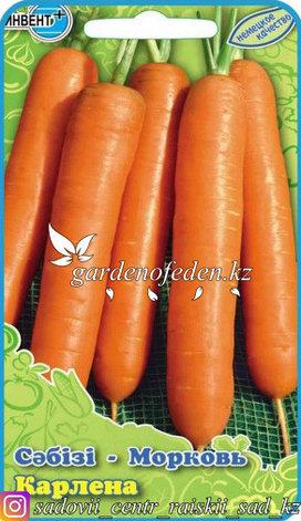 """Семена моркови """"Карлена""""., фото 2"""