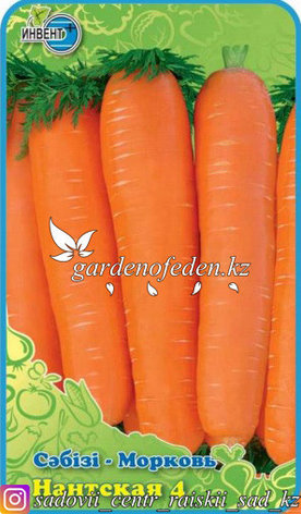 "Семена моркови ""Нантская 4""., фото 2"