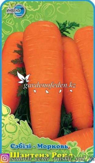 "Семена моркови ""Шантенэ Роял""."