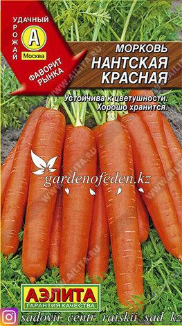 "Семена моркови Аэлита ""Нантская красная""., фото 2"