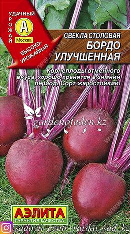 """Семена свеклы столовой Аэлита """"Бордо улучшенная""""., фото 2"""