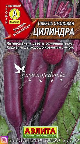 "Семена свеклы столовой Аэлита ""Цилиндра""., фото 2"