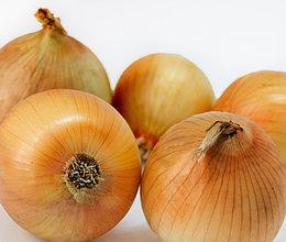 Семена лука репчатого