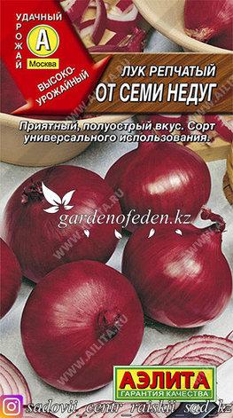 """Семена лука репчатого Аэлита """"От семи недуг""""., фото 2"""