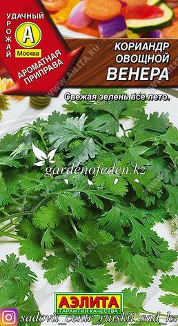 "Семена кориандра овощного Аэлита ""Венера""., фото 2"