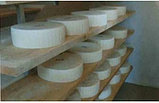 Мини-сыроварня Malgamatic 300, фото 3