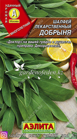 "Семена шалфея лекарственного Аэлита ""Добрыня""., фото 2"