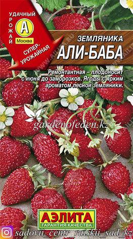 """Семена земляники Аэлита """"Али Баба""""., фото 2"""