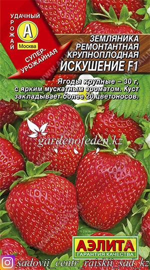 """Семена земляники ремонтантной крупноплодной Аэлита """"Искушение F1""""."""