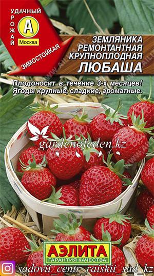 """Семена земляники ремонтантной крупноплодной Аэлита """"Любаша""""."""