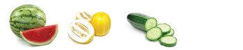 Ультра точный робот для графтинга (прививки) овощных растений AFGR-800CS, фото 3
