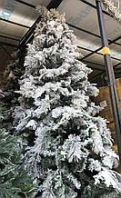 Заснеженная элитная новогодняя ель