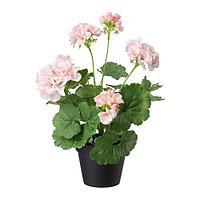 ФЕЙКА Искусственное растение в горшке, д/дома/улицы, Герань розовый