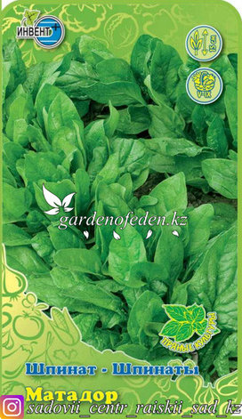 """Семена шпината """"Матадор""""., фото 2"""