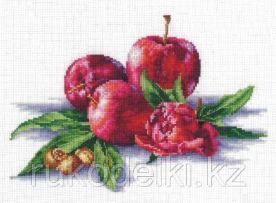 """Набор для вышивания крестом """"Яблоки и орешки"""""""