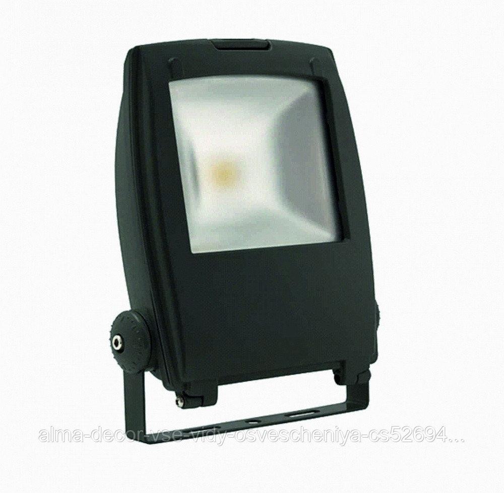 Прожектор светодиодный Полюс 3 LED 30W