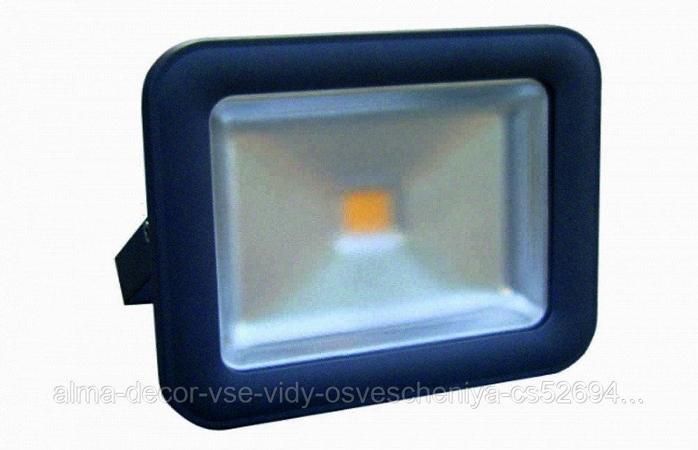 Прожектор светодиодный Полюс 8 LED 50 W