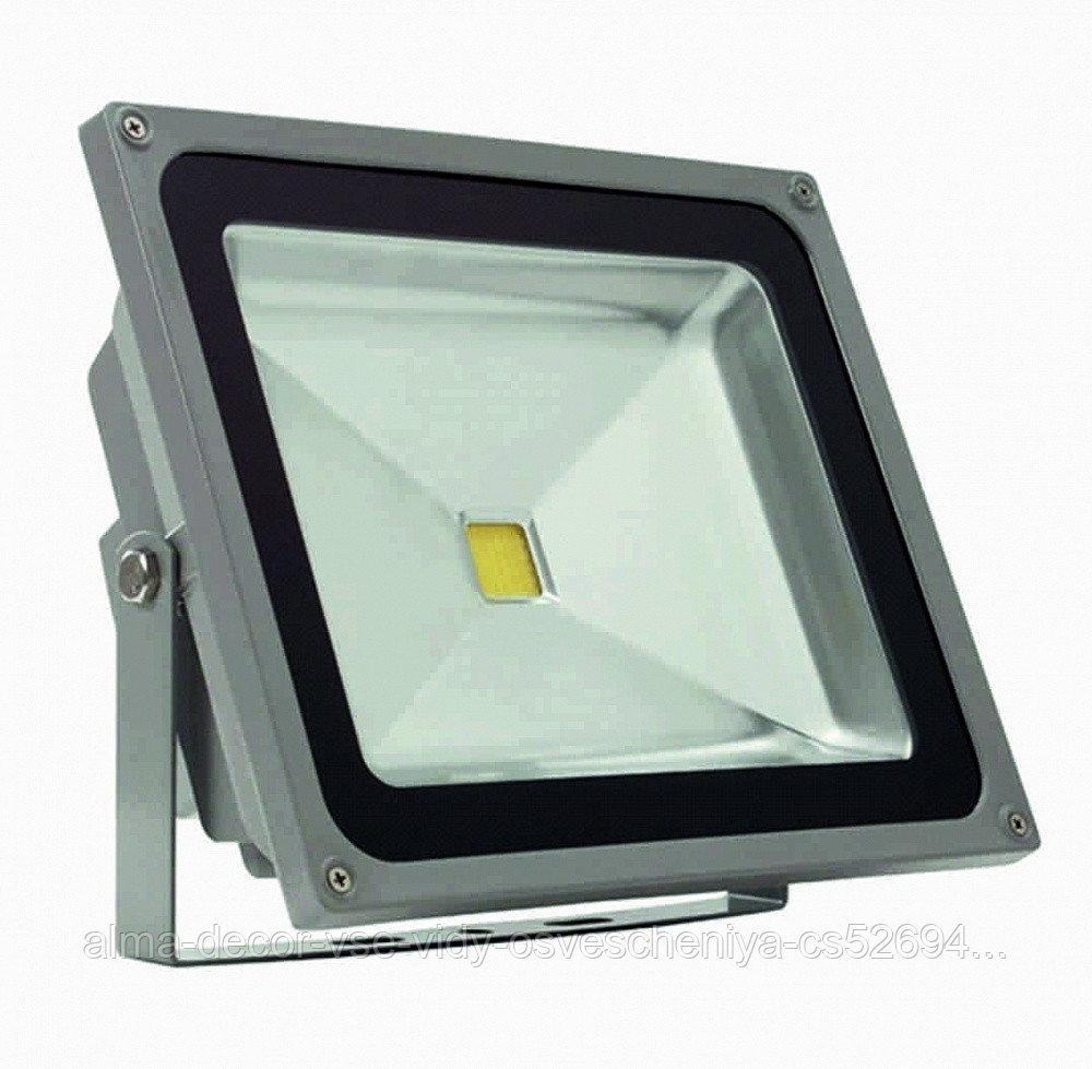 Прожектор светодиодный Полюс 12 LED 50 W