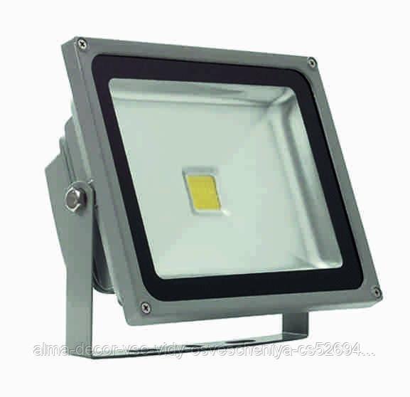 Прожектор светодиодный Полюс 10 LED 20 W
