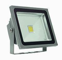 Прожектор светодиодный Полюс 10 LED 20 W, фото 1
