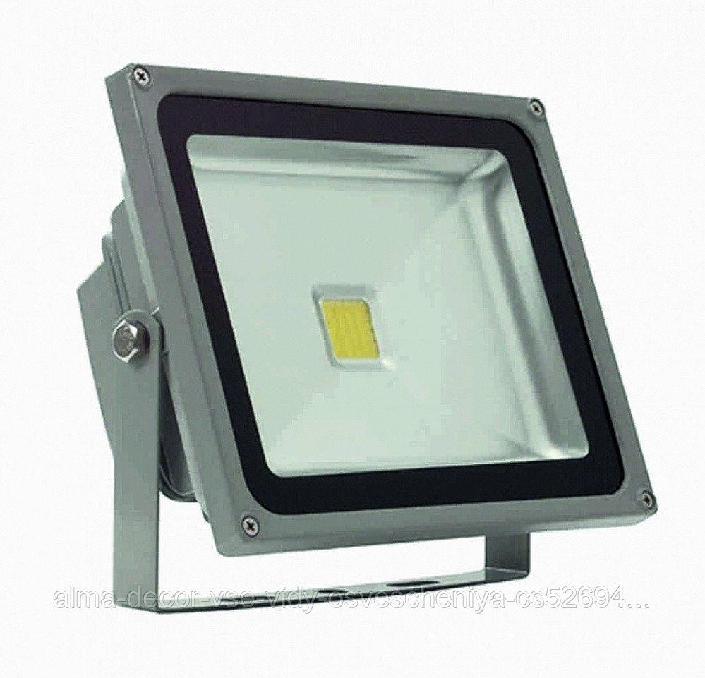 Прожектор светодиодный Полюс 11 LED 30 W
