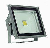Прожектор светодиодный Полюс 11 LED 30 W, фото 1