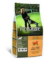 Pronature Holistic Adult All Breeds  беззерновой - для собак, утка с апельсином 340 гр., фото 1
