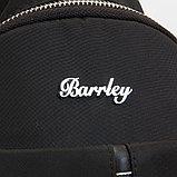 Мужская сумка BARRLEY, фото 2