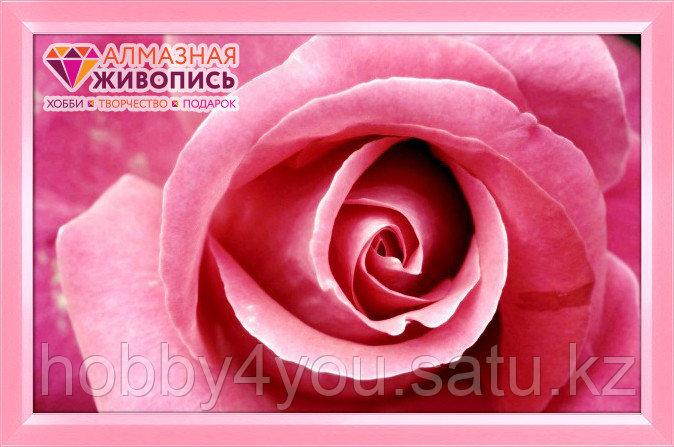"""Картина стразами на холсте """"Бутон розы"""", 25*40см"""