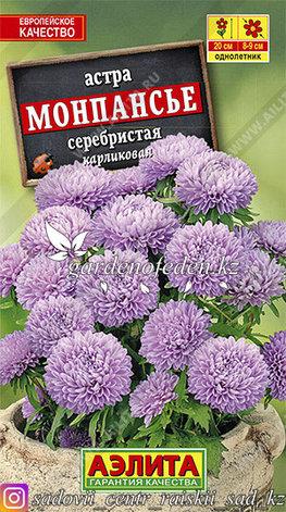"""Семена астры Аэлита """"Монпансье серебристая""""., фото 2"""