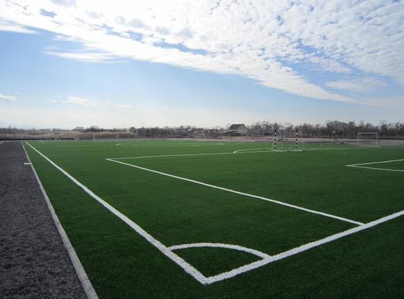 Специализированные спортивные сооружения, фото 2