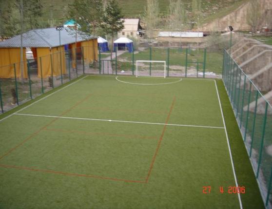 Частное футбольное поле, фото 2
