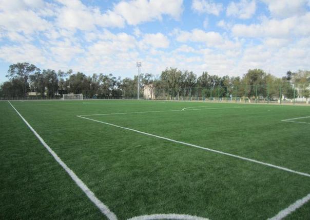 Частные спортивные сооружения , фото 2