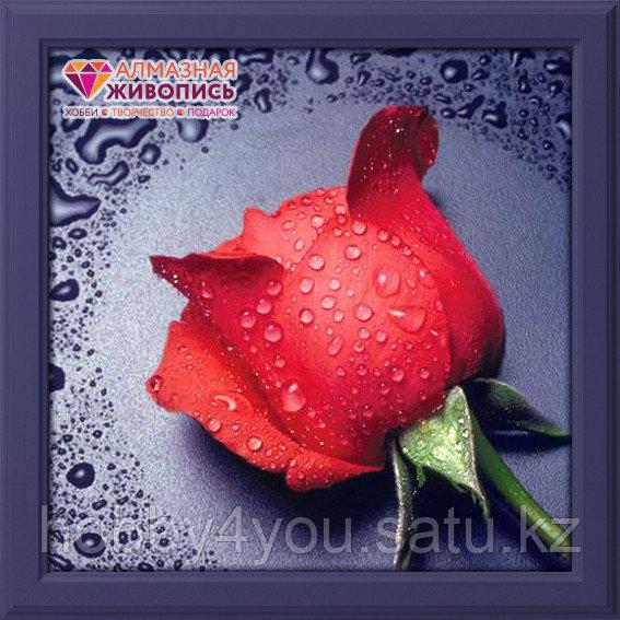 """Картина стразами """"Красная Роза"""", 22*24см"""