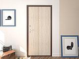 Двери, фото 3