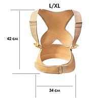 Стабилизатор спины Comfortisse Posture, фото 3