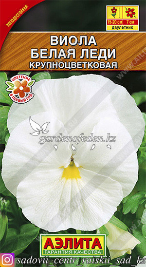 "Семена виолы Аэлита ""Белая Леди""."
