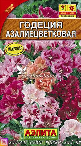"""Семена годеции Аэлита """"Годеция азалиецветковая, смесь окрасок""""., фото 2"""