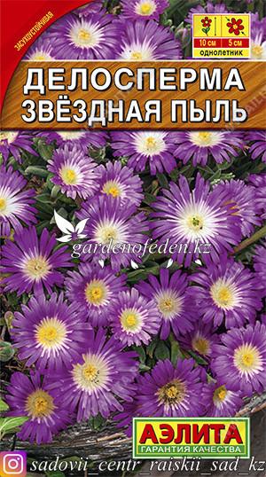 """Семена делоспермы Аэлита """"Звездная Пыль""""."""