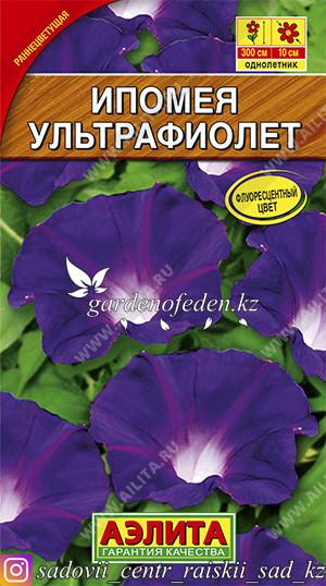 """Семена ипомеи Аэлита """"Ультрафиолет""""."""