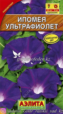 "Семена ипомеи Аэлита ""Ультрафиолет""., фото 2"