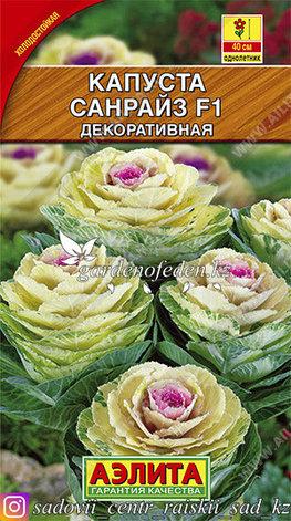 "Семена капусты декоративной Аэлита ""Санрайз F1""., фото 2"