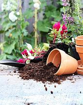 Товары для растениеводства