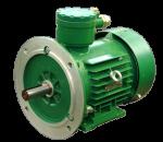 Электродвигатель взрывозащищенный асинхронный АИМЛ 80В2 Лапы У 2, 5, фото 5