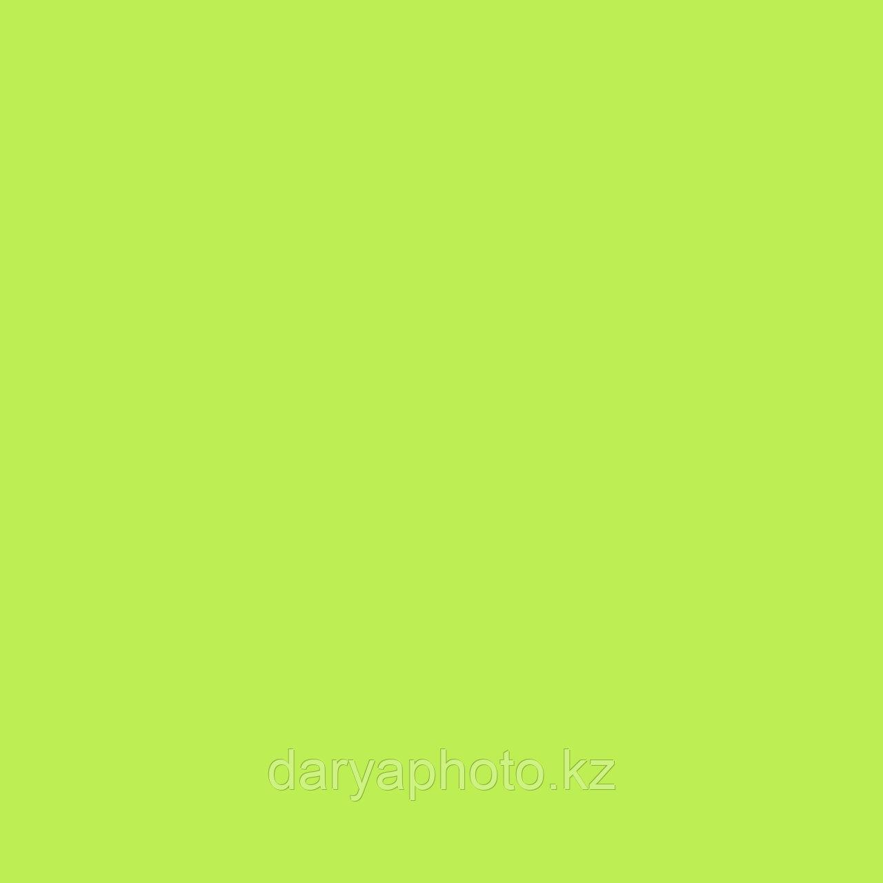 Тропический зеленый Фон бумажный. Фотофон. Фон для фотостудии
