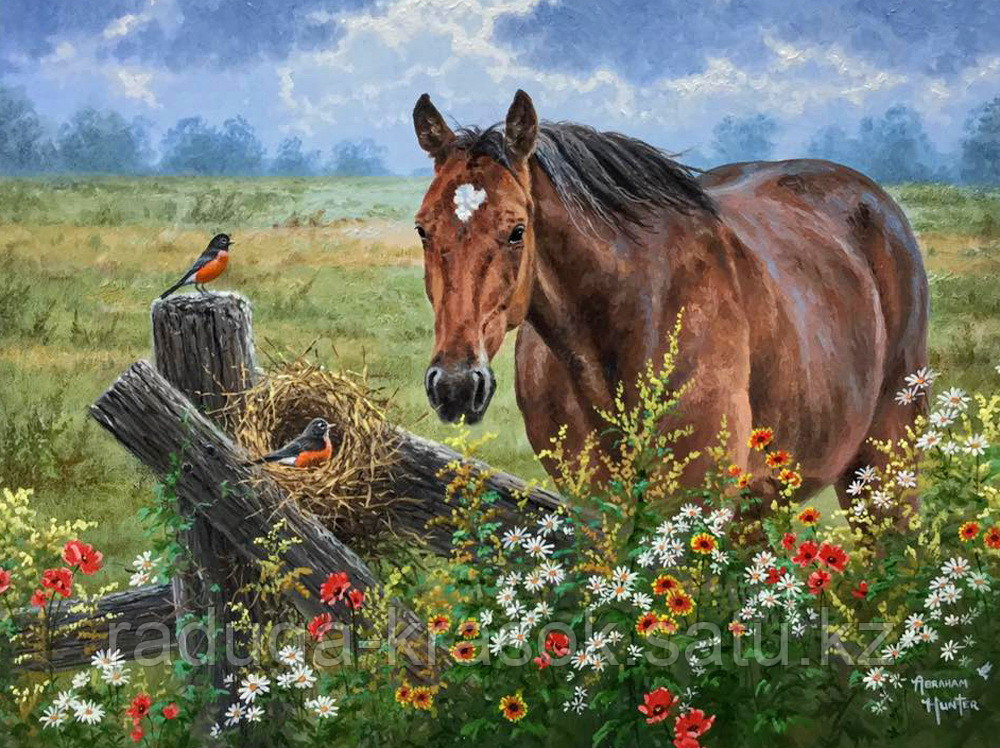 "Картина по номерам ""Лошадка"""