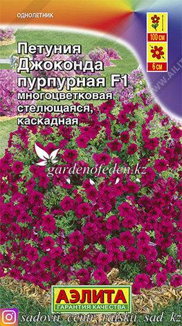 """Семена петунии Аэлита """"Джоконда пурпурная F1""""., фото 2"""