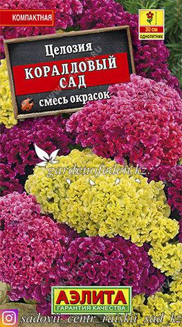 """Семена целозии Аэлита """"Коралловый сад, смесь окрасок""""., фото 2"""